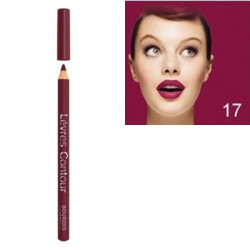 Bourjois Levres Contour Lip Pencil 17 Prune Caresse